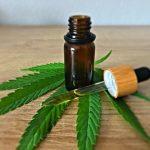 Le cannabis thérapeutique à base de CBD en Suisse